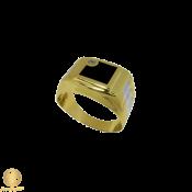 Rings (66)